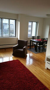 Spacious 2 Bedroom (4 1/2) in Downtown for May or June Transfer