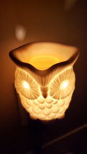 I am a Certified Scentsy Consultant