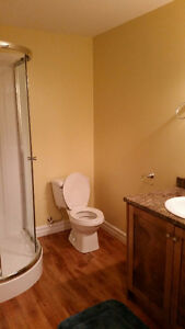 Furnished Room With Private Bath,Arnold's Cove, Next to Bull Arm St. John's Newfoundland image 2