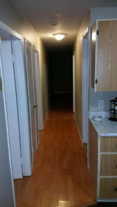 2 Bedroom Basement apartment Gould's
