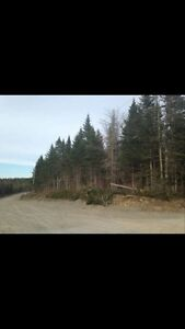 Building lot in Willow Grove, NB - cheap taxes!