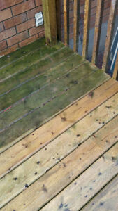 Pressure Washing Services - Houses, Decks, Patios, RVs...