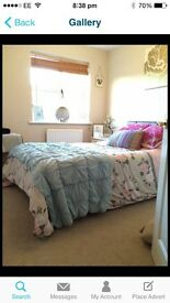Room to rent Tewkesbury