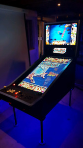 Full sized Video Pinball machine and Arcade