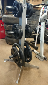 Rubber grip plates Olympic and hoist weight tree
