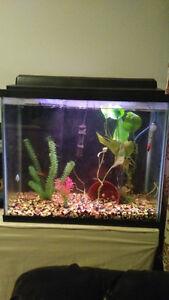 Selling a 25 gallon aquarium setup