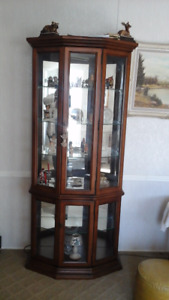 Full Wall Size Show Cabinet