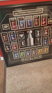 Nhl Stanley Cup history framed picture