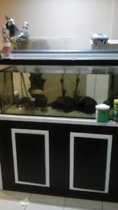 Fish tank for sale by owner