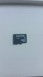 1 GB SanDisk micro SD card
