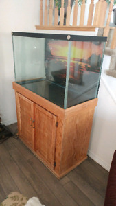 55 gallon fish tank with filter, cabinet and cleaning hose