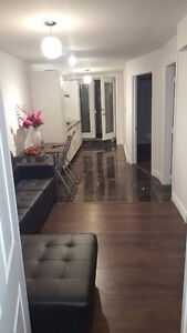 2 bedroom walk out brand new basement