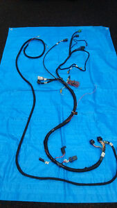 Holley EFI Main and Power wiring harnesses