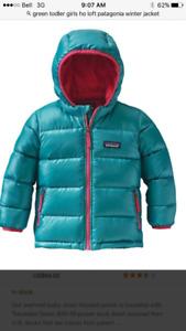 Toddler girls 2T down filled pantagonia jacket.