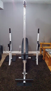 Complete Northern Lights Home Gym - Squat Stands, Bench, 100lbs