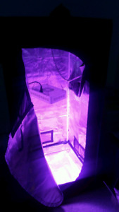 2x2 tent with 300w  led