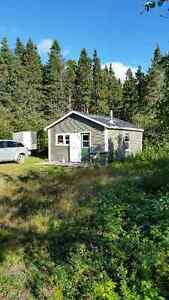 Cabin for sale near Millertown area