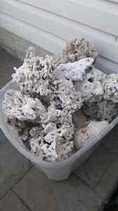 Salt water aquarium dead rock