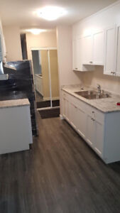 2 Bedroom Apartment for Rent $1,100.00 All utilities included