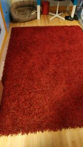 Beautiful area rug