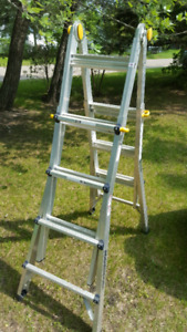 Multitask Ladder