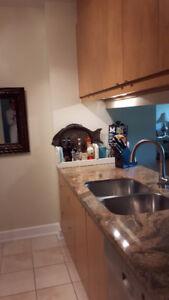 Cuisine, comptoir de granite, évier/robinet et électroménagers