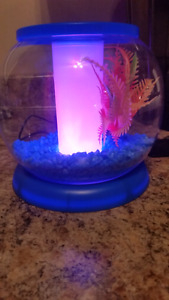 Fish bowl with led lights
