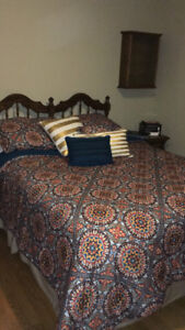 Red Sitka Suzani Comforter Set(Full/Queen)