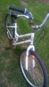 Ladies' Everyday bike