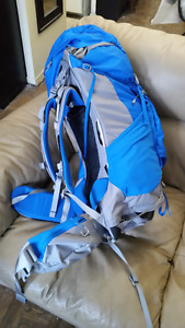 North Face Backpack (Banchee 65 Liters)