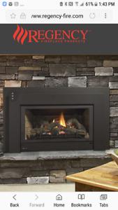 Beautiful brand new fireplace insert