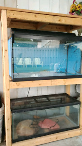 Two fish tanks with stand