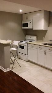 2 bedroom modern lower level apartment in North Ajax