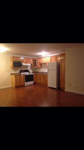 One bedroom apartment in paradise St. John's Newfoundland image 3