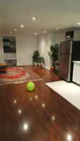 Basement Finishing (SALE) Home Renovation by Yousef