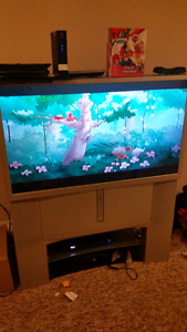 46' projection screen HDTV