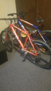 Jamise bicycle for sale