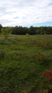 2 BUILDING LOTS @ 2.47 ACRES EACH BETWEEN GIBBONS & REDWATER