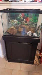 20g aquarium with stand and heater