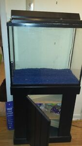 30 gal. Fish Tank and stand for sale $100obo