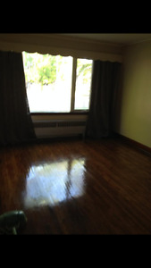 Newly renovated 1 bedroom suite neat HSC