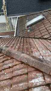 Roof De Moss...Roof Cleaning...Guttters...Windows...Power Wash.. North Shore Greater Vancouver Area image 5