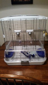 Small parrot or budgie starter