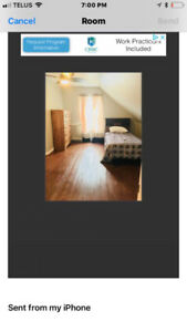 Rooms for rent
