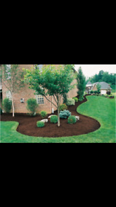 Professional Landscaping at Very Affordable Rates!!