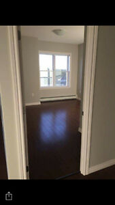 Professional Room-mate sought - Bedford Feb 1st