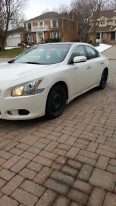 2009 Nissan Maxima SV Premium NO RUST, Low Mileage