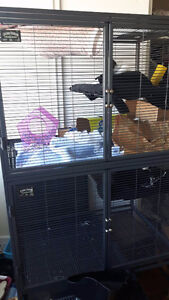 Double Critter Nation Rat Cage + Accessories + FREE Delivery!