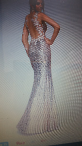 AMAZING GOWN for Special Occasions Size 12.