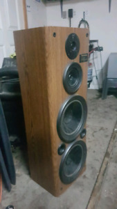 2 10 inch subs for sale